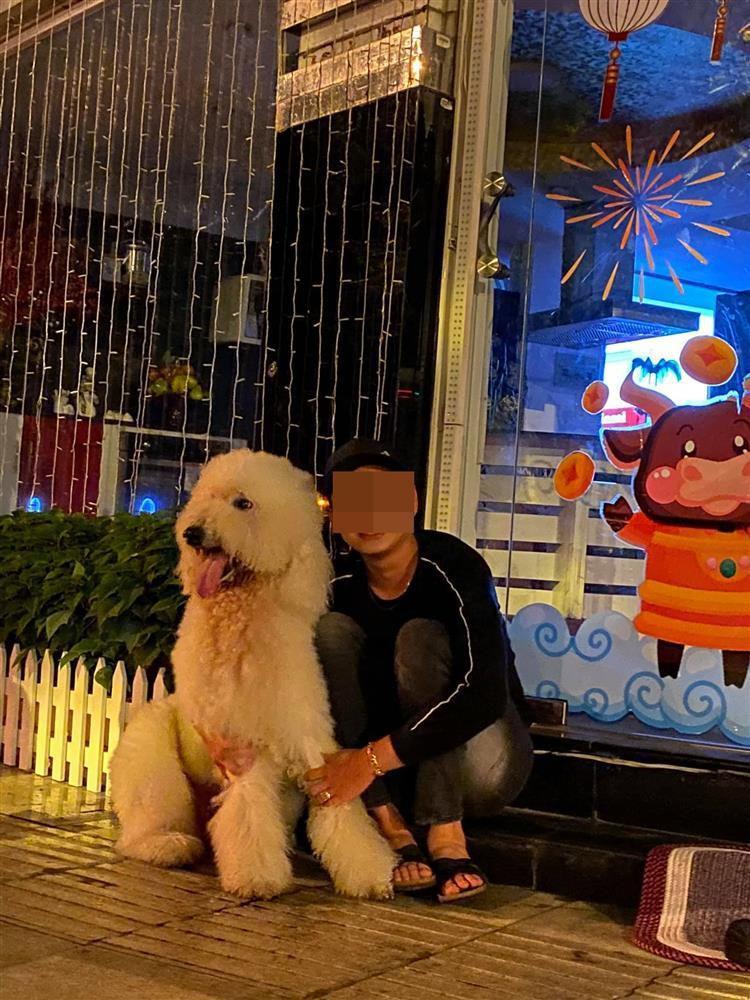 Lý Quý Khánh tìm ra chú chó Beau